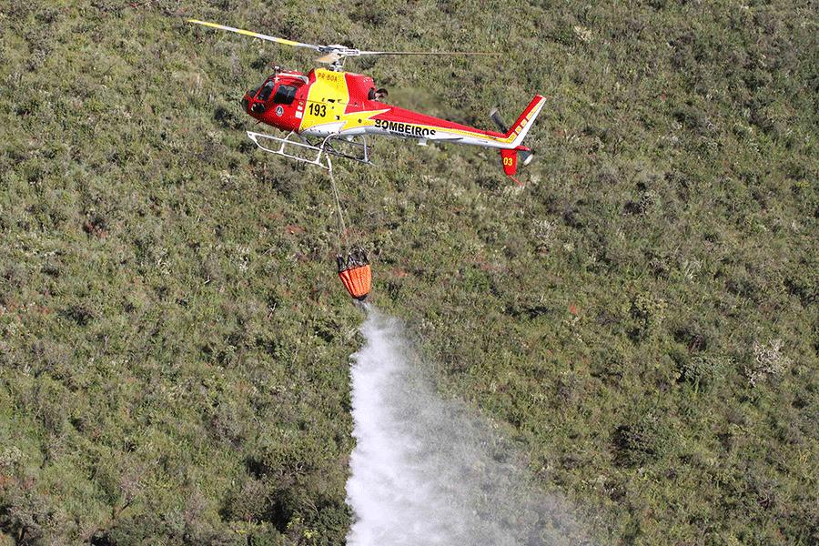 Campanha quer prevenir incêndios florestais em Minas Gerais
